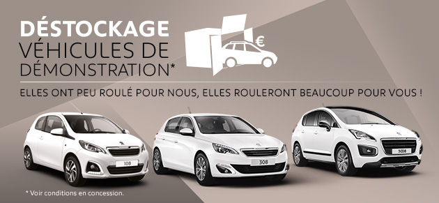 Slica etats unis garage et concessionnaire peugeot for Garage peugeot a lyon