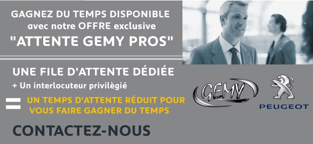 Gemy frejus garage et concessionnaire peugeot frejus for Fred garage frejus